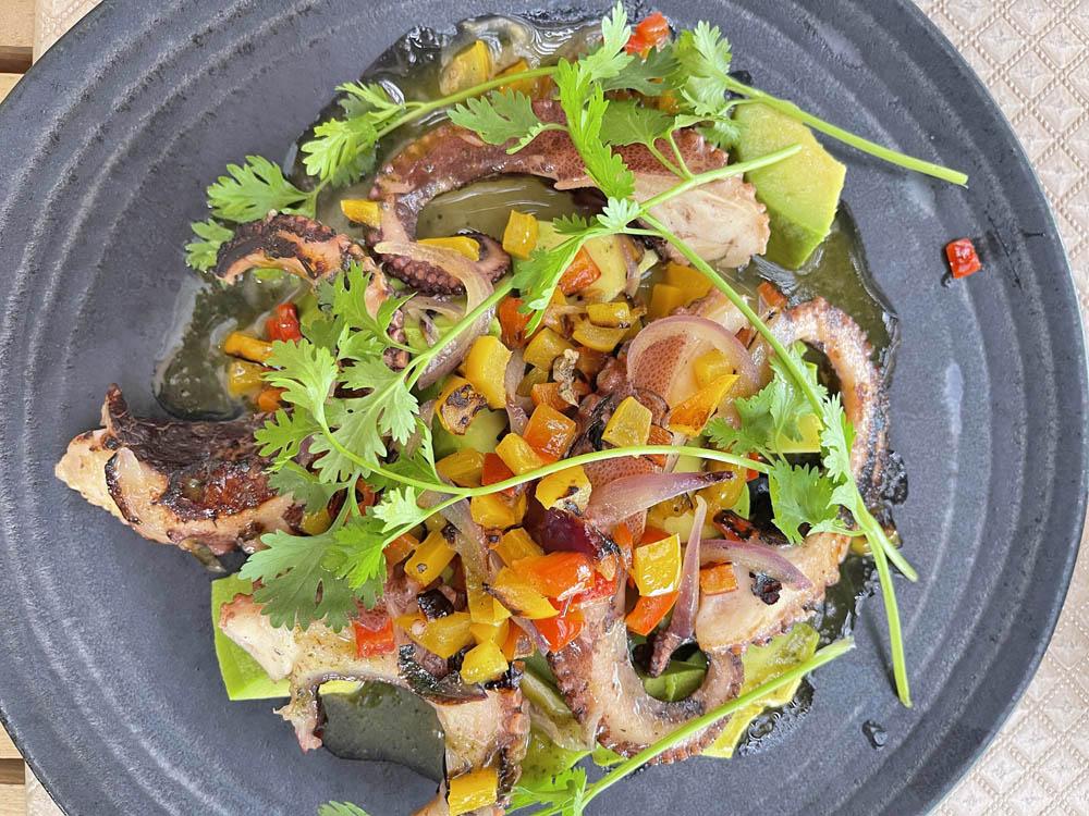 Pousada Anttunina maragogi - jantar incluído